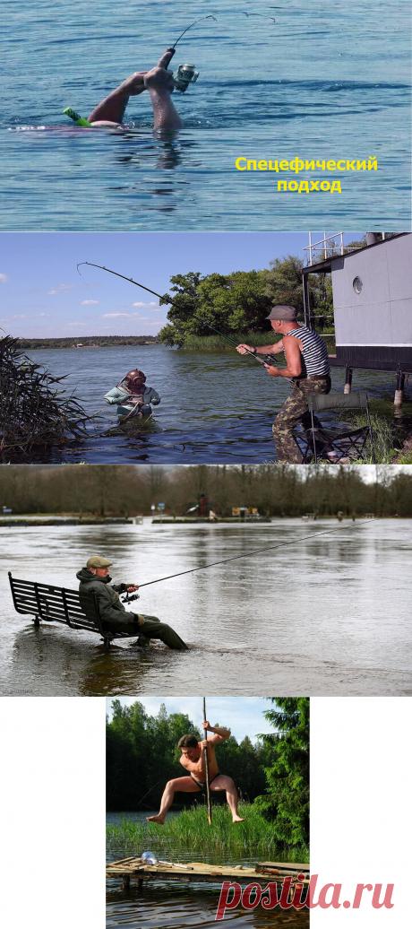 Мой топ самых нелепых фотографий с рыбалки | Охота и Рыбалка | Яндекс Дзен