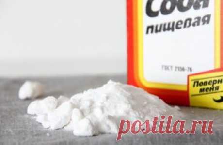 10 способов применения пищевой соды на даче | Тренды (Огород.ru)