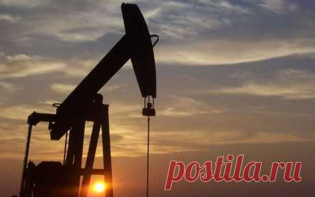 Белоруссия не стала повышать тариф на транзит нефти из России Белоруссия не стала повышать тариф на транзит нефти из России с 1 августа по системе магистральных нефтепроводов ОАО «Гомельтранснефть Дружба». Об этом