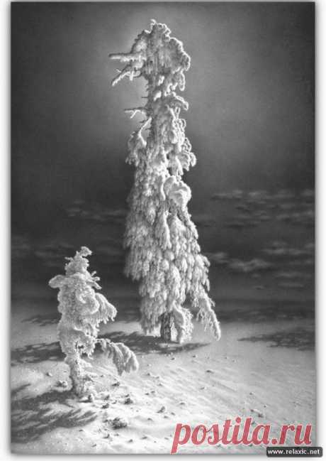 Зима, нарисованная карандашом (55 фото)   Релаксик