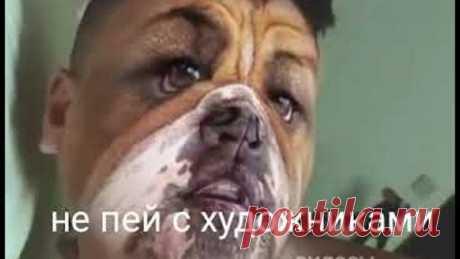 Не пей с художниками )))