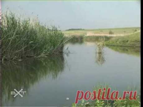 """Мирознай - Природный парк """"Нижнехоперский"""""""