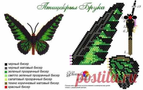 Бабочка крылья шаблон / бесплатные узоры для любителей бисера ...