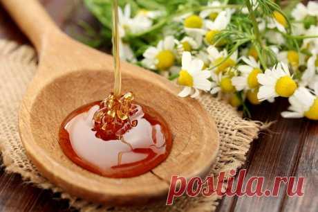 Зачем есть мёд на ночь: удивительное влияние на здоровье — ГАРМОНИЯ В СЕБЕ