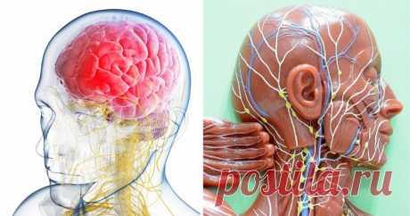 Ваш мозг может быть наполнен воспалительной лимфатической жидкостью. Спите так, чтобы избавиться от нее! Обратите внимание!