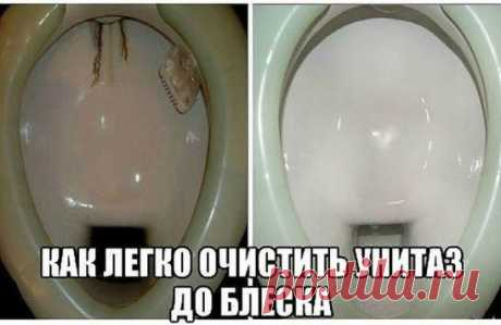 The simple trick will help you to clear a toilet bowl of all pollution! \u000aAnd for a long time will relieve of an unpleasant smell!\u000aThe toilet is a place where you most often are naked therefore this room has to remain ideally pure. But so happens not always. Mostly hard water is the reason of an uric stone. Especially strongly deposits are formed if the tank proceeds. And here as the rust reason on a toilet bowl rusty pipes act.\u000aOn shelves of shops the set of various cleaning is placed