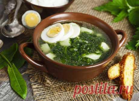 Щавелевый борщ: рецепт весеннего первого блюда - tochka.net