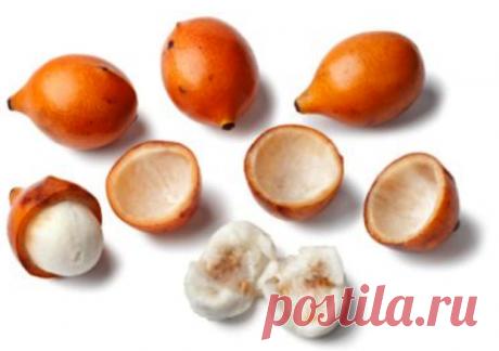 Необычные и вкусные экзотические плоды — 6 соток