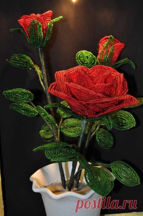 Роза из бисера: подробный мастер-класс с описанием плетения