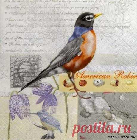 Картинка для декупажа / Рукоделие / Декупаж / Pinme.ru