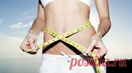 Самая дешевая диета: худей и экономь! - Образованная Сова