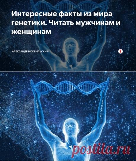 Интересные факты из мира генетики. Читать мужчинам и женщинам | Александр Ноорильский | Яндекс Дзен