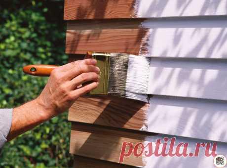 Как покрасить постройки и изделия из дерева, чтобы краска служила МНОГО ЛЕТ и радовала глаз. Совет опытного строителя | 6 соток