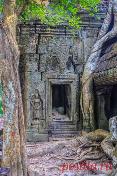 Angkor / Cambodia (by Tom Kilroy).