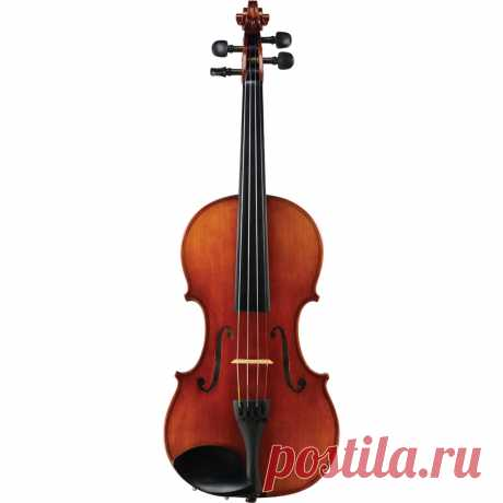 Картинки скрипки (37 фото) ⭐ Забавник