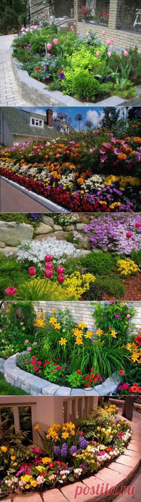 Цветники с принципом непрерывного цветения | Дача и Ландшафтный дизайн