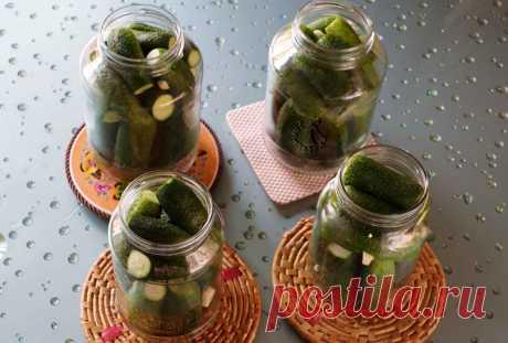 Огурцы на зиму с лимонной кислотой - рецепт хрустящих маринованных огурцов с пошаговыми фото   ne-dieta