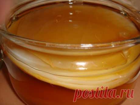 Медуза из банки — все о чайном грибе.  Биологически чайный гриб (медузомицет) представляет собой сообщество нескольких организмов — дрожжевых грибков и уксуснокислых бактерий. Дрожжевые грибы очень похожи на те, которые обитают в вытекающем соке коры дуба, на поверхности мягких плодов или забродивших плодово-ягодных соках. Верхняя часть колонии блестящая, плотная, а нижняя имеет вид многочисленных свисающих нитей и выполняет роль ростовой зоны. Именно в нижней части чайног...