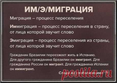 Все мы учили русский в школе, и многие знали его на отлично, но все равно нет-нет да и проскакивают ошибки в речи. Еще и в самый неподходящий момент — в письме.