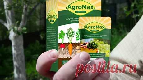 Как собрать в два раза больше урожая без лишних усилий? Проверено на личном опыте!