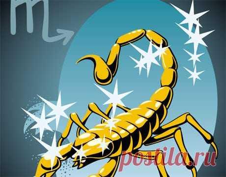Совместимость: Скорпион с другими знаками, характер и стихии Совместимость: Скорпион с другими знаками. Описание характера Скорпиона. Взаимоотношения с другими знаками в дружбе, любви и семейных отношениях.
