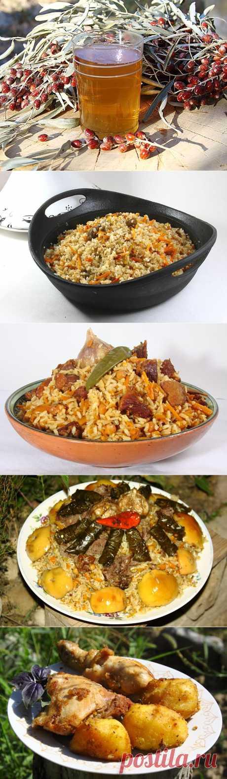 Блог питания Azu.uz