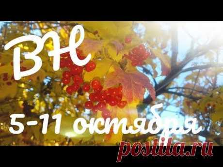 ВЫШИВАЛЬНАЯ НЕДЕЛЯ 5 - 11 октября/вышивка крестом