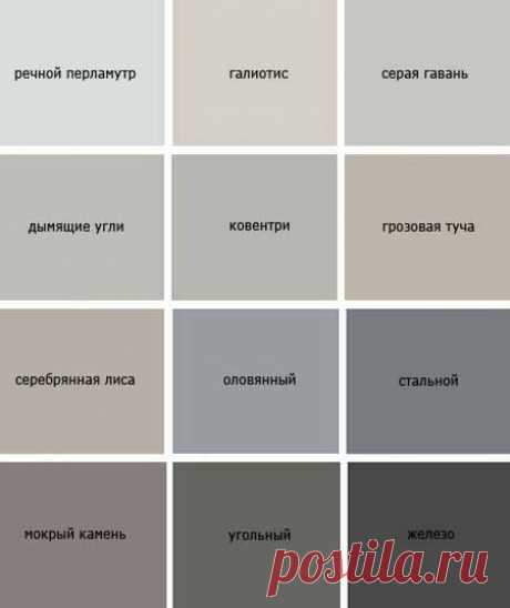 Gray color in clothes - a combination to other flowers, a photo