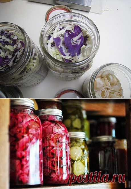 Как закрыть салаты из капусты на зиму, фото рецепт - MoiKompas.ru