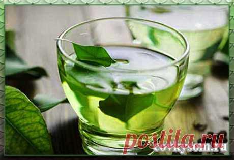 Home-made mint liqueur