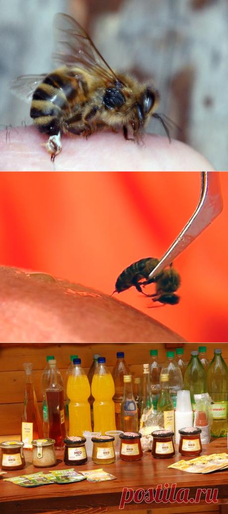Апитерапия - лечение пчелами и продуктами пчеловодства - БиоКорова