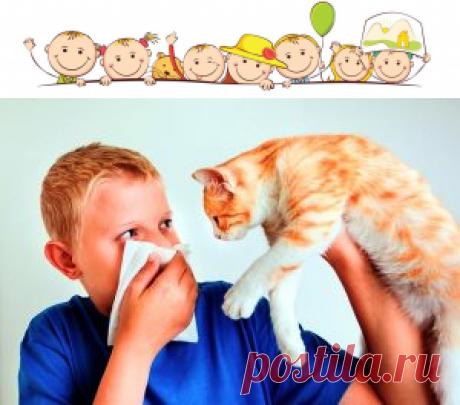Виды аллергии — Детская жизнь В зависимости от природы болезни, аллергия подразделяется на ряд разновидностей: — респираторная (где ключевыми раздражителями являются пыльца растений, домашняя пыль, шерсть животных), — контактная (проявляется в виде отклика организма на соприкосновение с аллергенами химической и биологической природы), — пищевая (формируется на некоторые продукты питания), — инсектная (реакция на укусы насекомых), […]