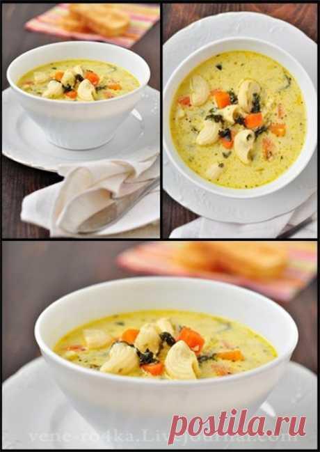 Как приготовить сырно-молочный суп с овощами и макаронными изделиями  - рецепт, ингридиенты и фотографии