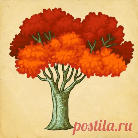 Выберите дерево и узнайте, какие изменения произойдут в Вашей размеренной жизни. Тест эффективен в 78 % | Лисичка | Яндекс Дзен