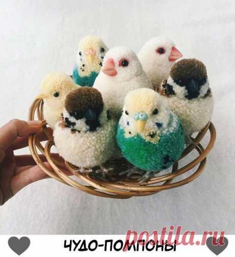 Пасхальные помпоны птицы и яйца diy Модная одежда и дизайн интерьера своими руками