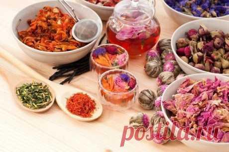 Рецепты травяных чаев для похудения #здоровье #рецепт Рецепт №1  Составить смесь из следующих трав. Для этого возьмите по 20 г:  семена петрушки; семена фенхеля; мята перечная (листья); одуванчик (корень); а также 60 г коры крушины.  Приготовление:  Пару столовых ложек смеси из перечисленных трав залейте пол литрами кипятка. Теперь поставьте настой на полчаса в тепло. Затем нужно процедить. Пить натощак утром сразу весь приготовленный травяной настой.  Рецепт №2  Травяной ...