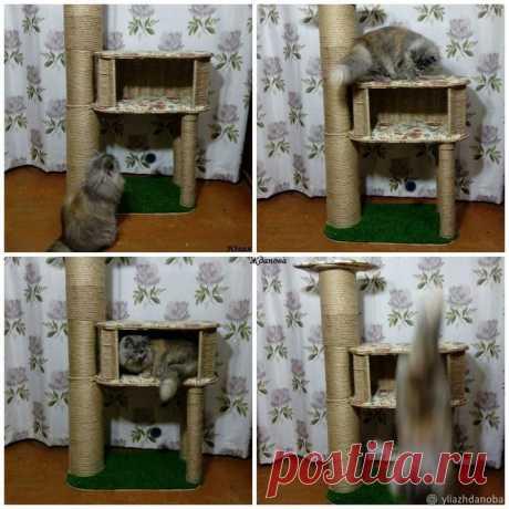 Мастерим домик для кошки