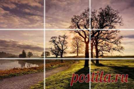 20 recepciones de la fotografía, habiendo estudiado que usted fotografiaréis como el profesional