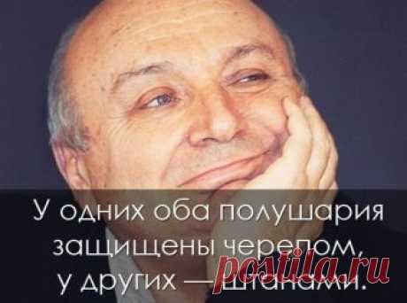 80 жизненных историй в одну строчку от Михаила Жванецкого