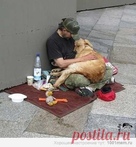 Тепло и любовь, которые мы отдаем, гораздо важнее тепла и любви, которые мы получаем. Лишь когда мы делимся теплом и любовью, ощущаем подлинную заботу о других, иными словами, проявляем сострадание, мы обретаем условия для подлинного счастья. Из этого следует, что любить самому важнее, чем быть любимым.  (ЕС Далай-Лама)