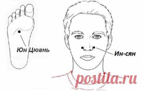 Las reglas simples de la medicina china para la conservación de la salud \u000d\u000aSabiduría oriental: «es mucho más fácil conservar la salud, y no restablecerlo después».
