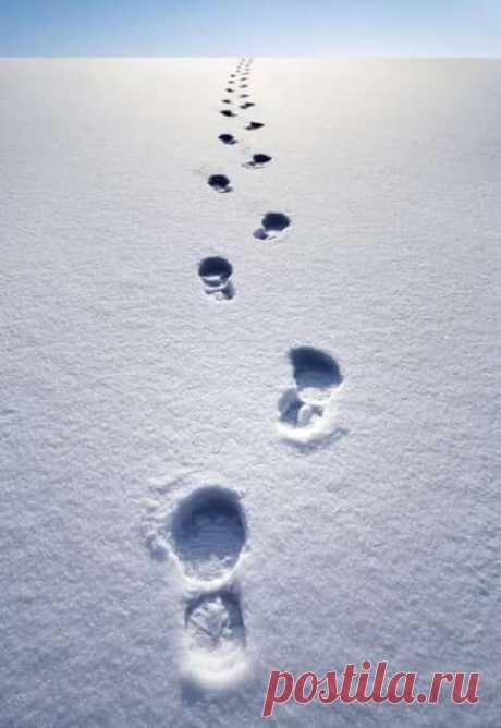 Я люблю снег. Особенно когда его много и можно ходить по сугробам и представлять, что ты гуляешь по облакам. И еще это очень красиво: идти по снегу, по которому не ступала нога человека. Сразу кажется, что ты какой-то особенный. Пусть даже и знаешь, что это не так.  Кэрол Рифка Брант