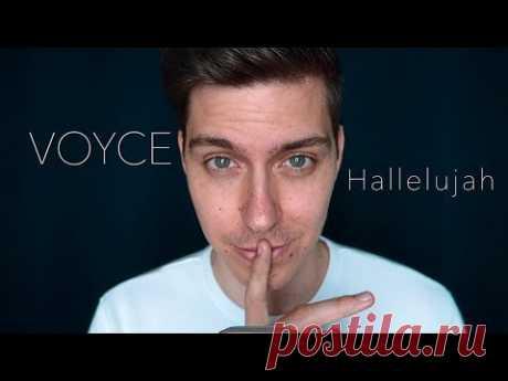 HALLELUJAH auf DEUTSCH   German Version by Voyce - YouTube