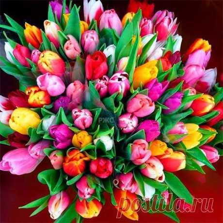 Поздравляем с Днём рождения всех, кто родился сегодня - 23 февраля!😘😘😘