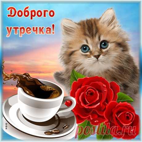 Красивая открытка с добрым утром