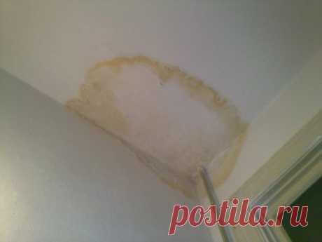 Покраска потолка после затопления: как победить желтые пятна и полосы