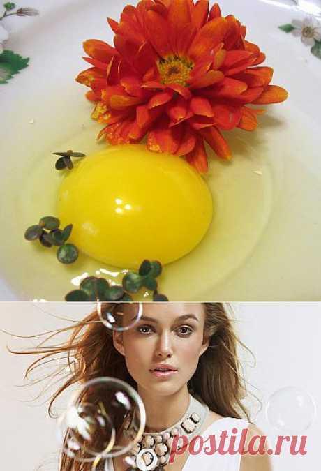 Домашний косметолог: шампуни для жирных волос