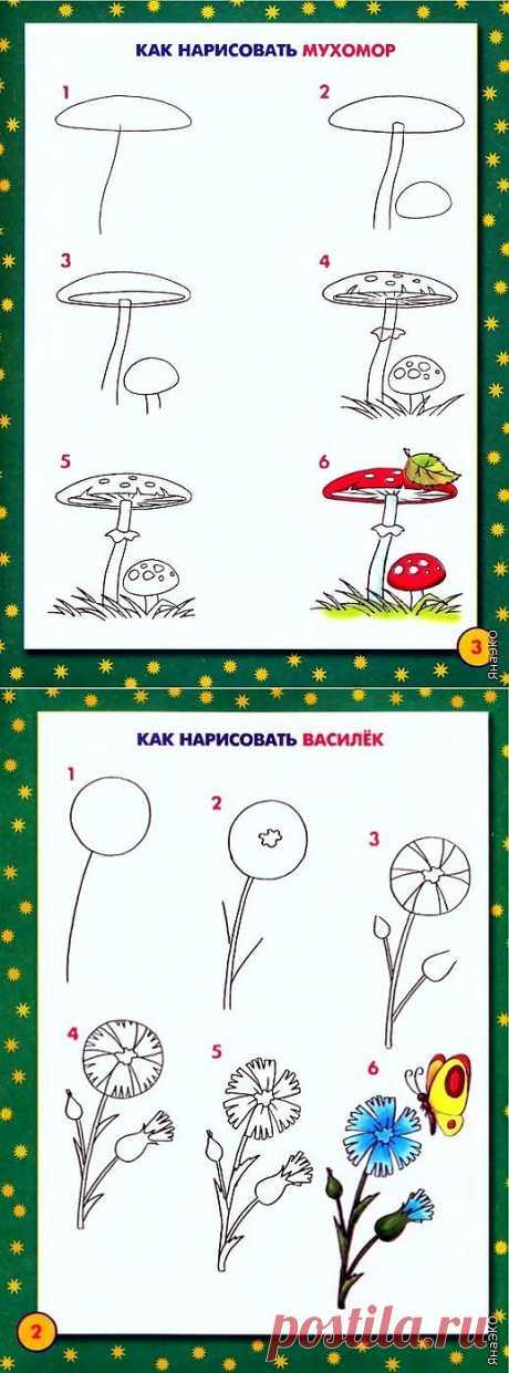 Книга Школа рисования для малышей.