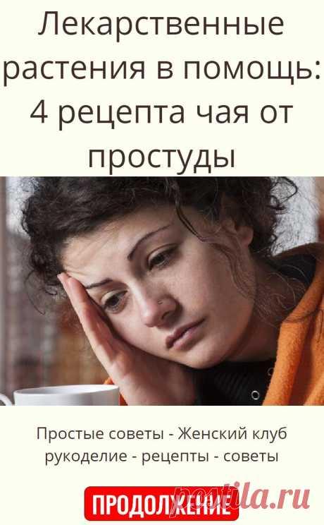 Лекарственные растения в помощь: 4 рецепта чая от простуды