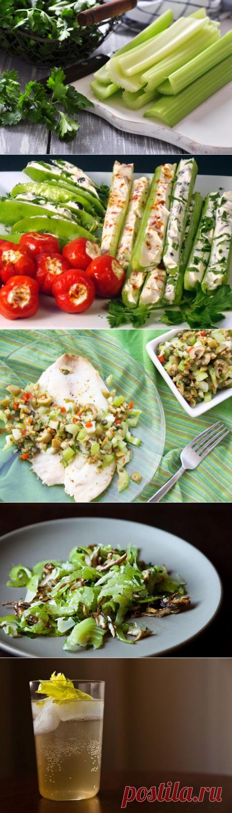 Удивительные полезные свойства сельдерея (+5 рецептов освежающих блюд)